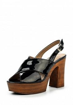 Босоножки, Alesya, цвет: черный. Артикул: AL048AWQEJ60. Женская обувь / Босоножки
