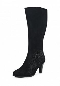 Сапоги, Ascalini, цвет: черный. Артикул: AS006AWJNY74. Женская обувь / Сапоги