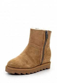 Полусапоги, Ash, цвет: коричневый. Артикул: AS069AWGKY18. Женская обувь