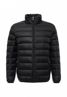 Пуховик, Baon, цвет: черный. Артикул: BA007EMLNS80. Мужская одежда / Верхняя одежда / Пуховики и зимние куртки