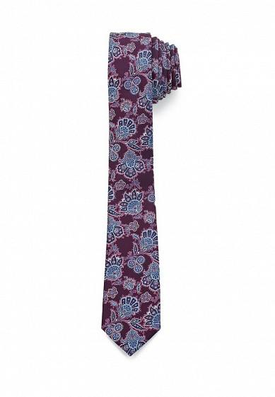 Купить Галстук Burton Menswear London фиолетовый BU014DMXXX26 Китай