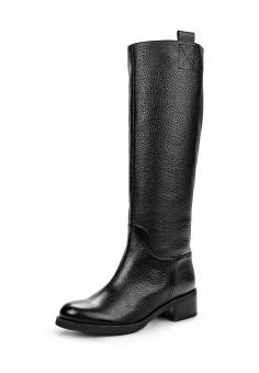 Сапоги, Giotto, цвет: черный. Артикул: GI514AWGZM87. Женская обувь / Сапоги