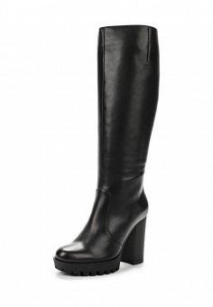 Сапоги, Giotto, цвет: черный. Артикул: GI514AWWHA27. Женская обувь / Сапоги