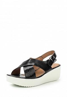 Босоножки, Topway, цвет: черный. Артикул: TO038AWTOB16. Женская обувь / Босоножки