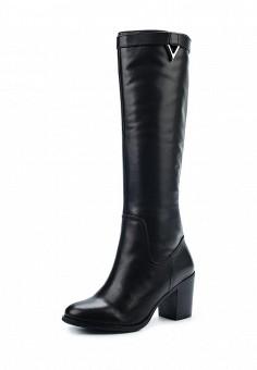 Сапоги, Vitacci, цвет: черный. Артикул: VI060AWYNH47. Женская обувь / Сапоги
